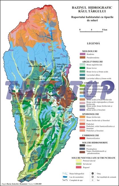 Hartă hidrografică: Râul Târgului